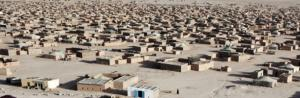 tn_refugee_camps_610.jpg