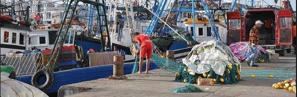 moroccan_fishermen_unloading_driftnets_in_tangiers_oceana.jpg