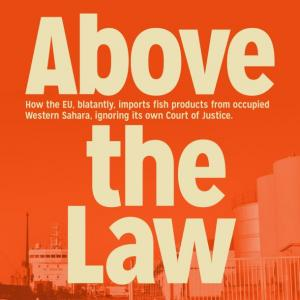 tn_abovethelaw2020_610.jpg